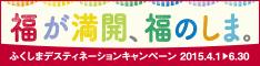 dc_banner234x60